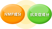 NMF成分 抗炎症成分